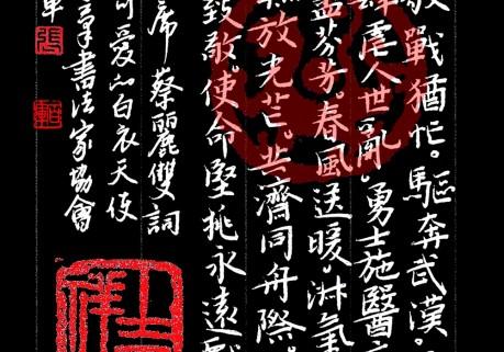 张百军硬笔楷书作品